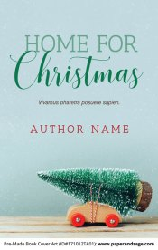 Pre-Made Book Cover ID#171012TA01 (Home for Christmas)