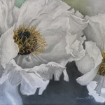 Peony flowers with stamens