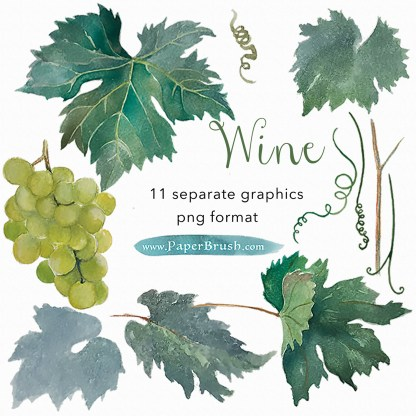 Grapevine bundle watercolour graphics