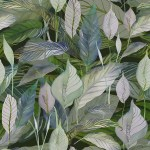 peace lily dark background