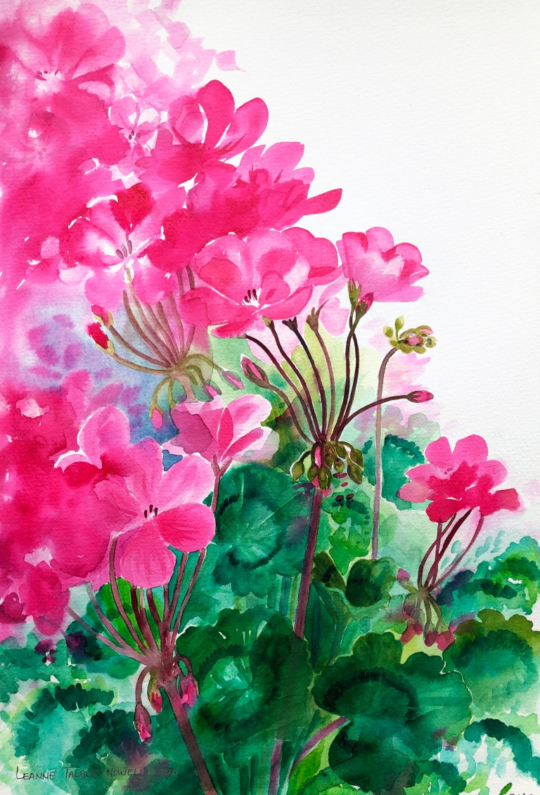 Geraniums by Leanne Talbot Nowell