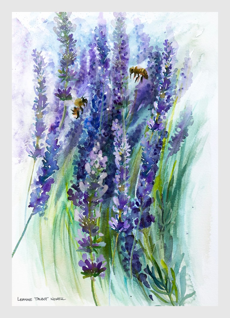 Lavender watercolour by Leanne