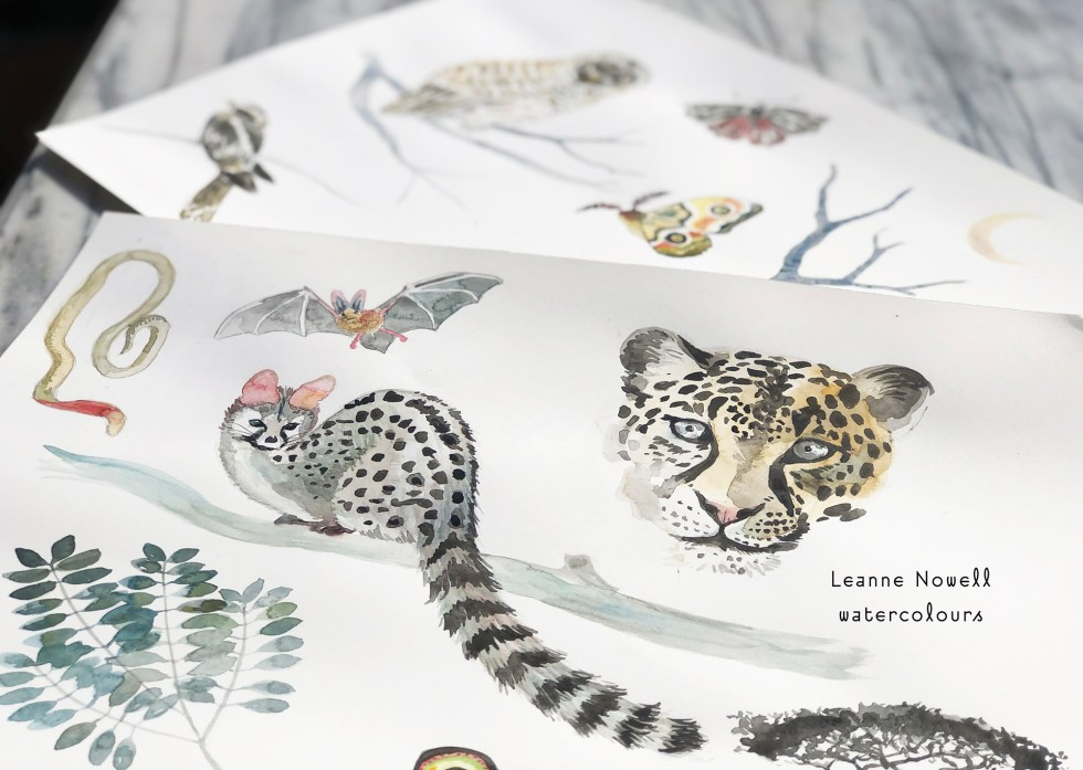 watercolour animals by Leanne Talbot Nowell