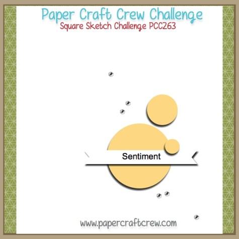 Square Sketch PCC Challenge 263