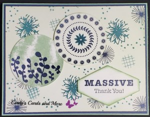 Massive Thank you Stamp set, greeting cards, handmade greeting cared, stamp set no one likes, Massive stamp set, Thank you cards that make you smile.