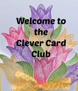 Fun Card Club, Clever cards,