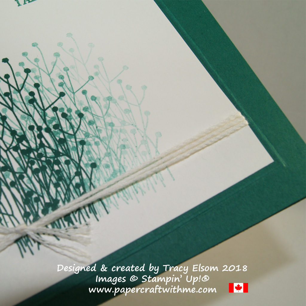 Close up of card showing embossed line edging the layer.