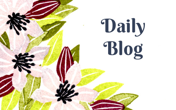 Daily Blog