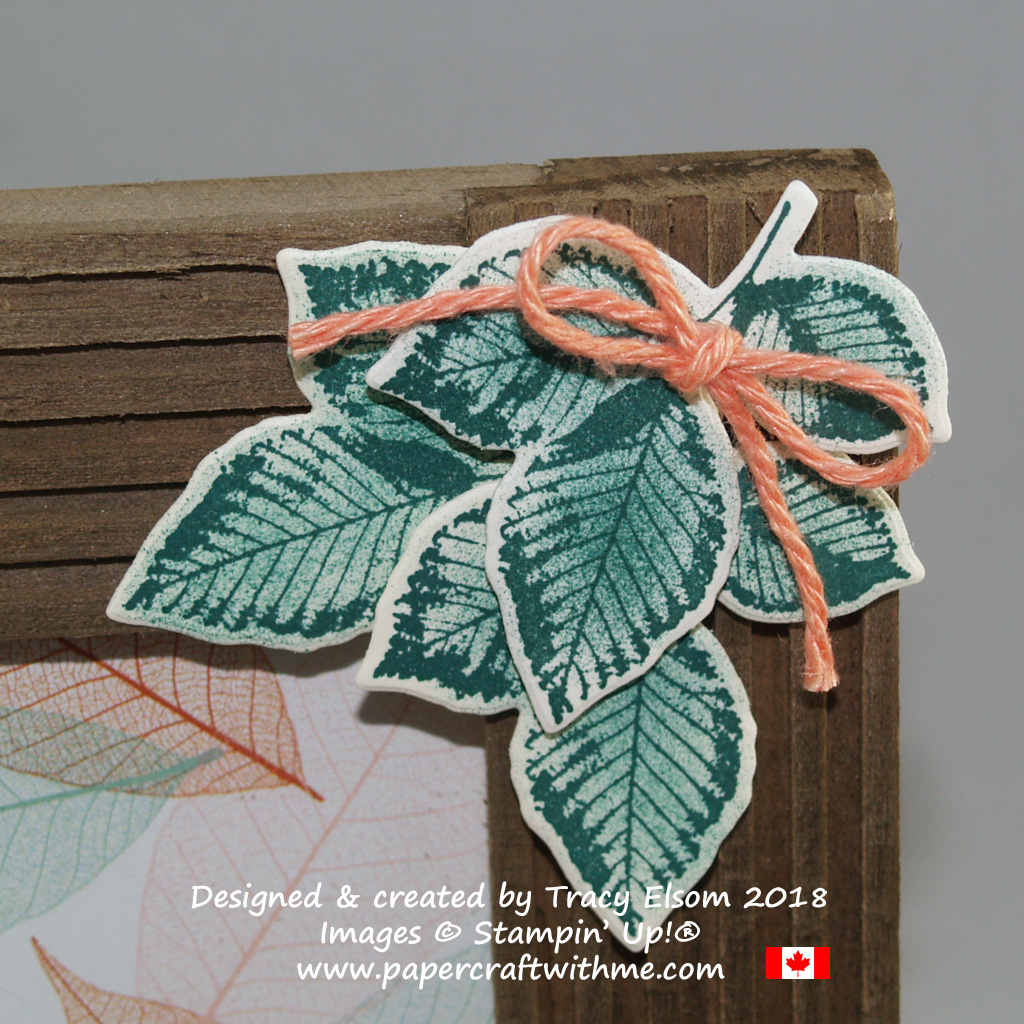 Triple leaf corner embellishment created for a photo frame using the Rooted in Nature Stamp Set and Nature's Roots Framelits Dies from Stampin' Up!