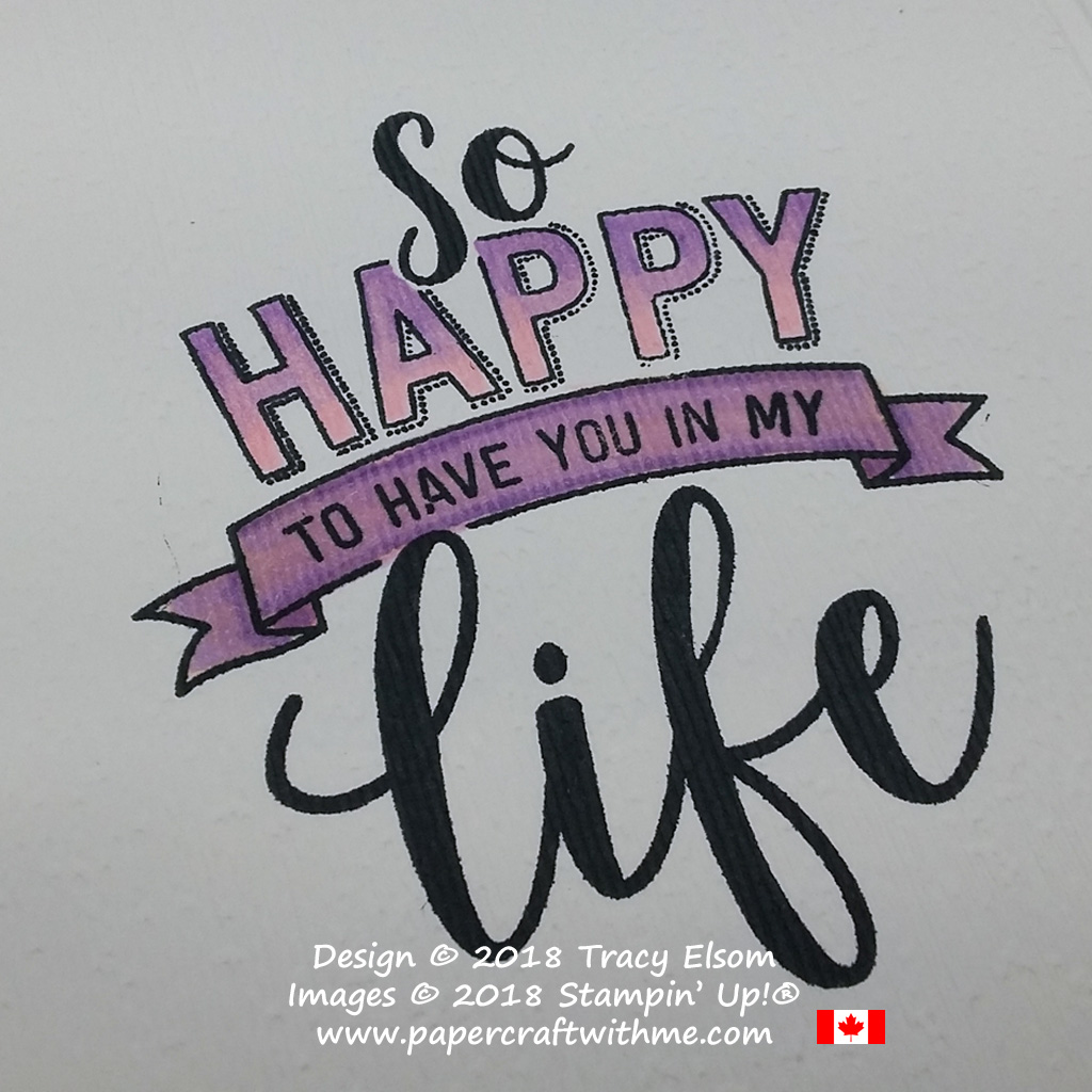Close up of ombre effect created using Stampin' Blends on an image from the Amazing Life Stamp Set from Stampin' Up!