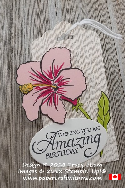 Large layered birthday gift tag with hibiscus image from the Humming Along Stamp Set from Stampin' Up!
