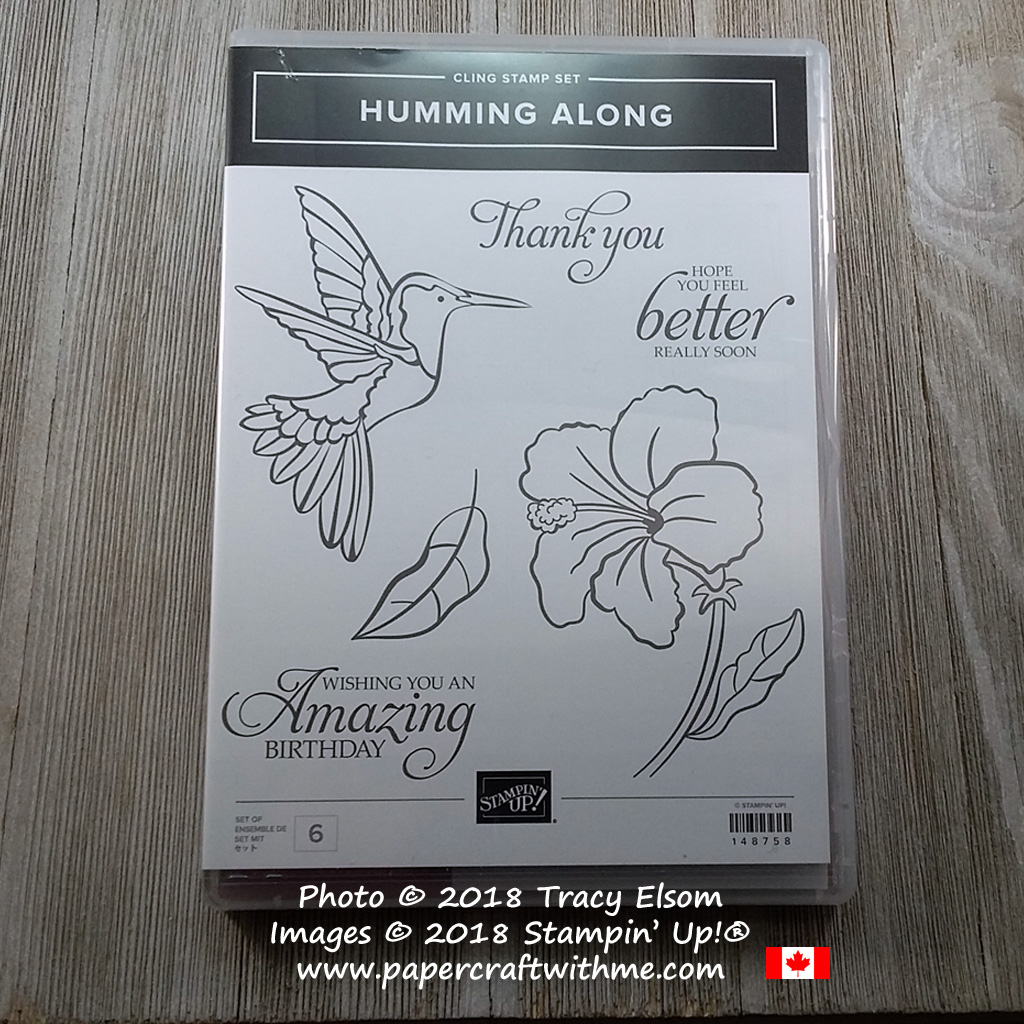 The Humming Along Stamp Set from Stampin' Up! includes large line-art images of a hibiscus flower and a hummingbird.