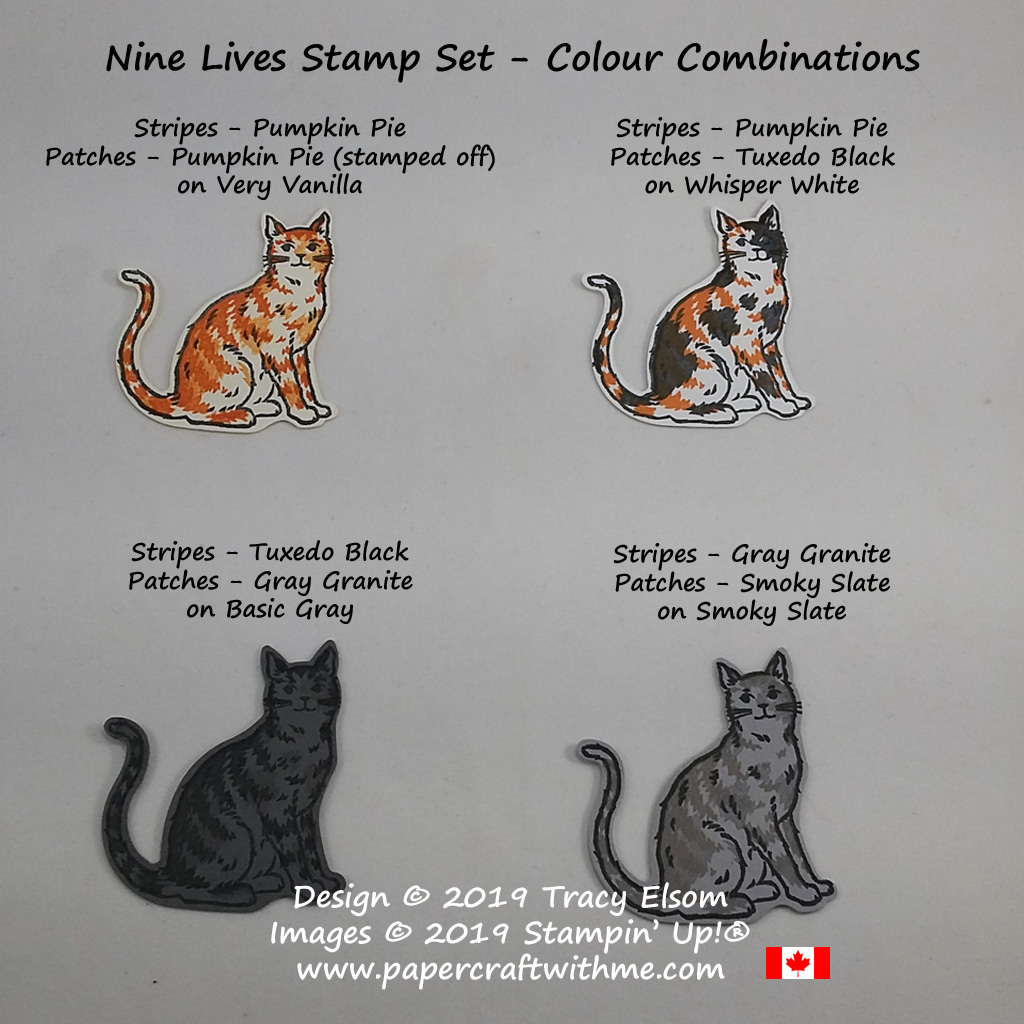 Four colour combinations for the cat image in the Nine Lives Stamp Set from Stampin' Up!