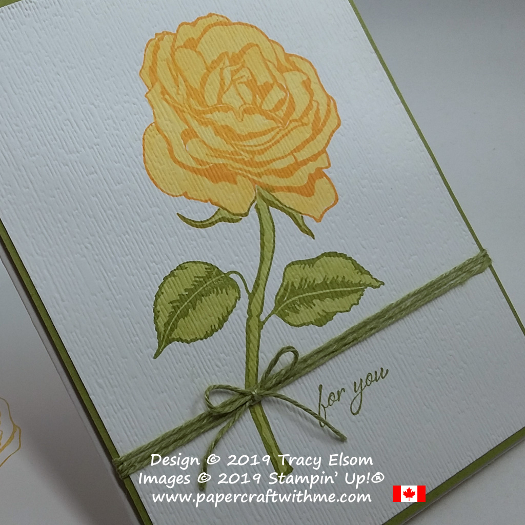 Close up of yellow rose from the Graceful Garden Stamp Set, coloured using Stampin' Blends and textured with the Subtle Embossing Folder, all from Stampin' Up!