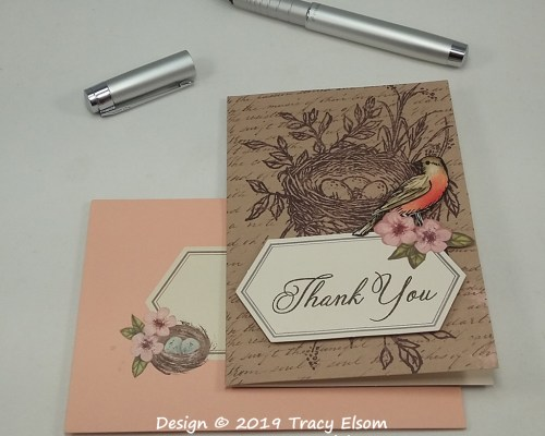 1765 American Robin Thank You Card