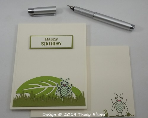 1790 Bug Birthday Card