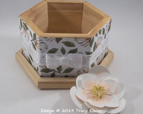 P53 Magnolia Box