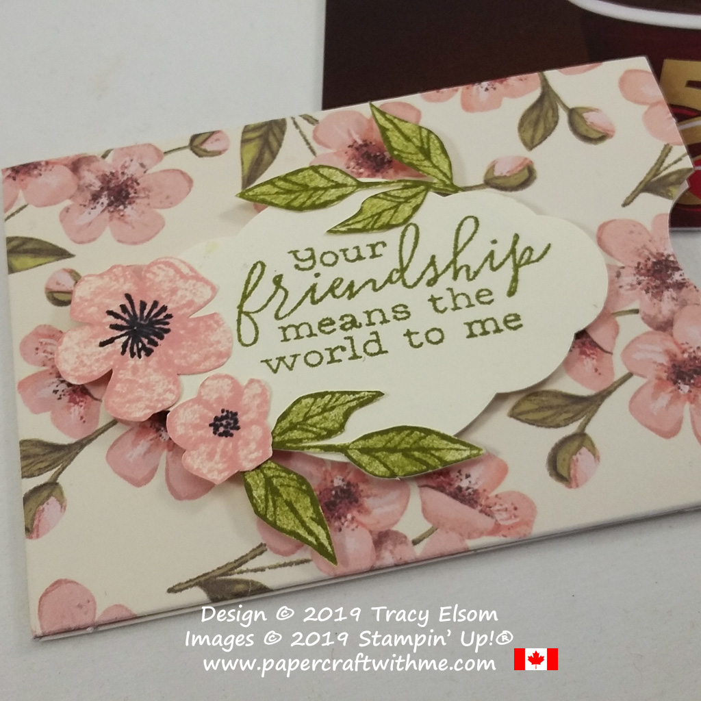 Close up of friendship gift card holder created using the Free As A Bird Stamp Set and a notecard base from the May 2019 Paper Pumpkin kit Hugs from Shelli.