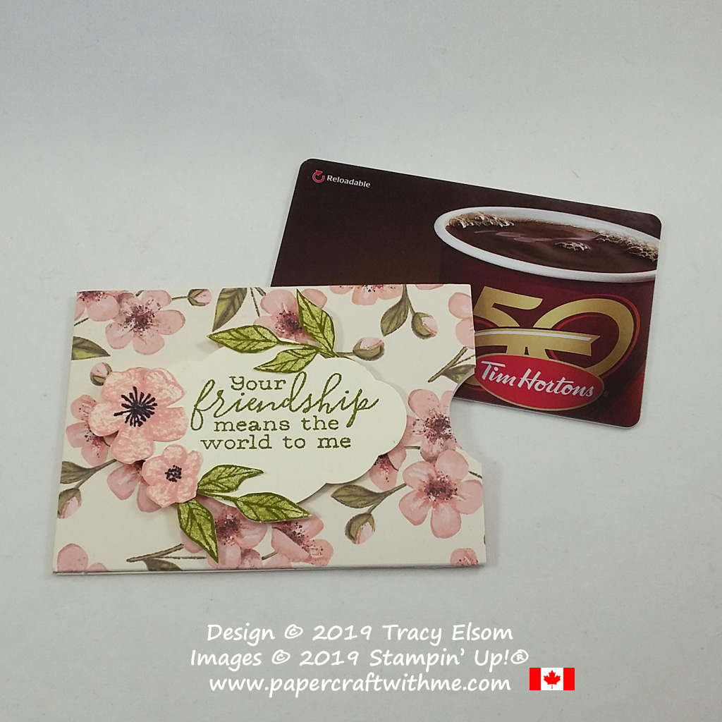 Friendship gift card holder created using the Free As A Bird Stamp Set and a notecard base from the May 2019 Paper Pumpkin kit Hugs from Shelli.
