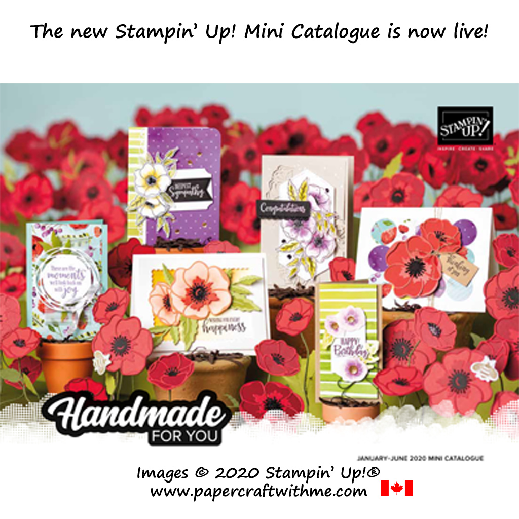 In Canada?  Order from the new Stampin' Up! January to June 2020 Mini Catalogue via my online store. #papercraftwithme