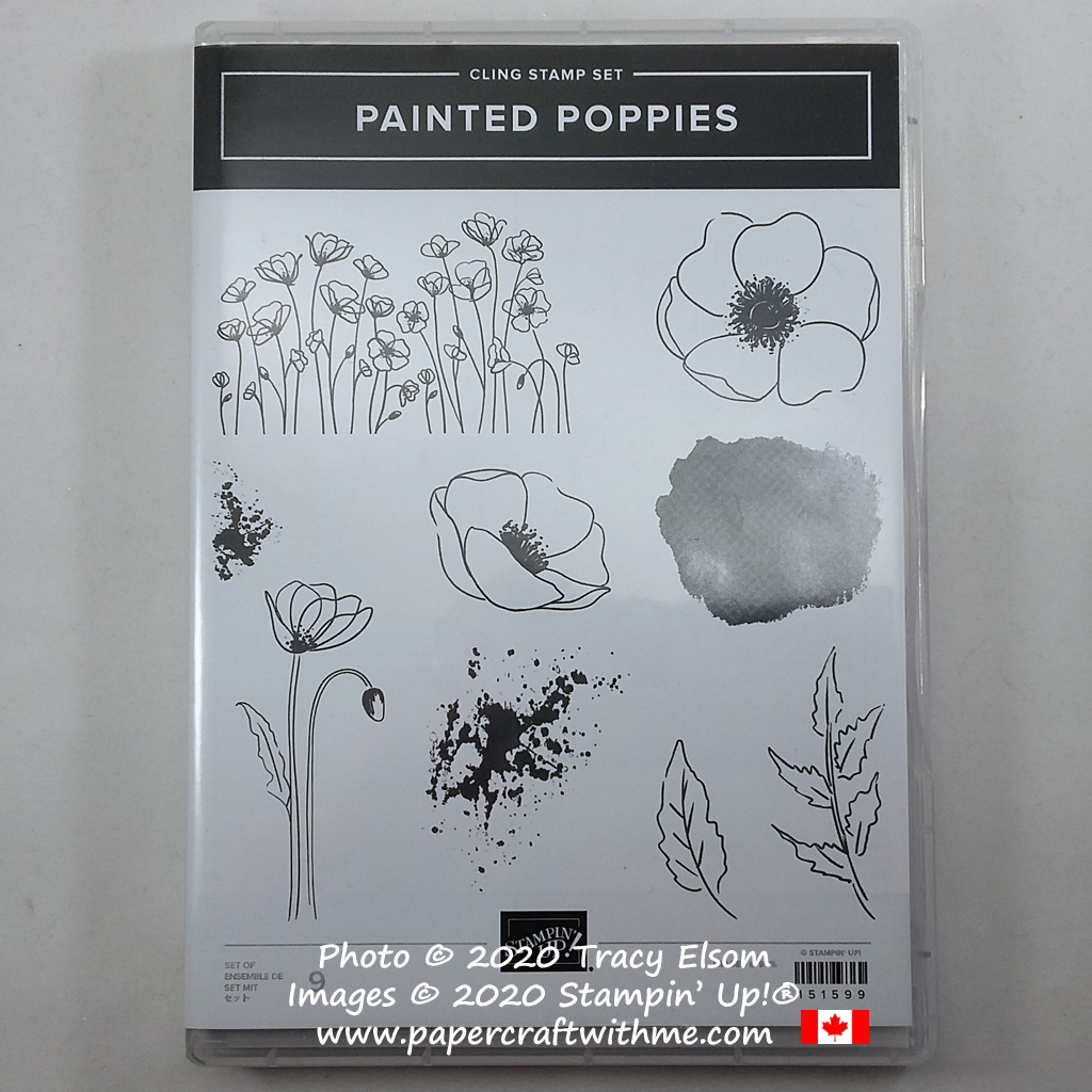 Painted Poppies Stamp Set from Stampin' Up! #papercraftwithme