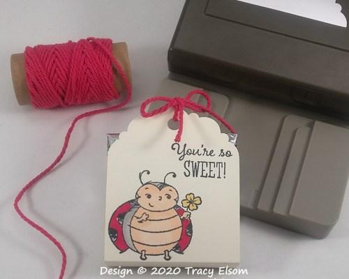 You're So Sweet Ladybug Treat