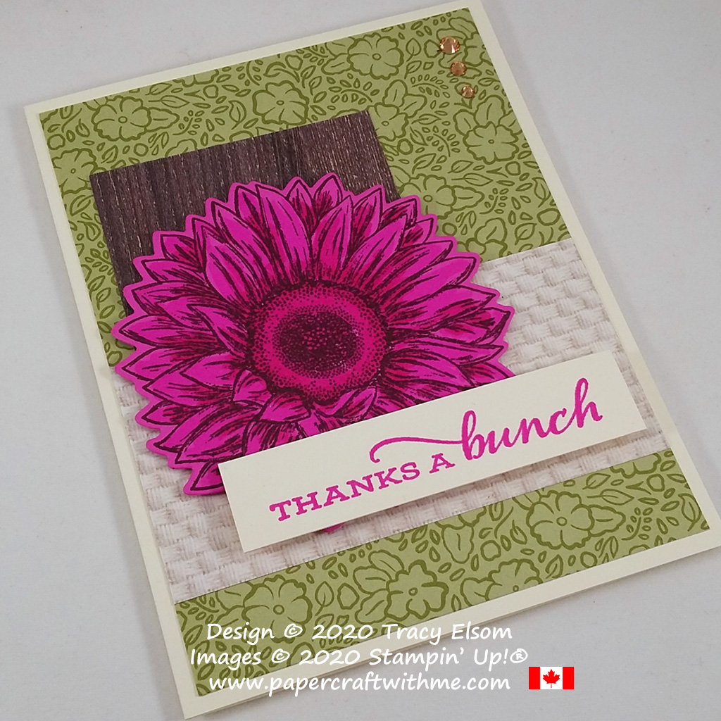 """Thanks a bunch"" card with Magenta Madness gerbera flower created using the Celebrate Sunflowers Stamp Set and coordinating Sunflowers Dies from Stampin' Up! #papecraftwithme"