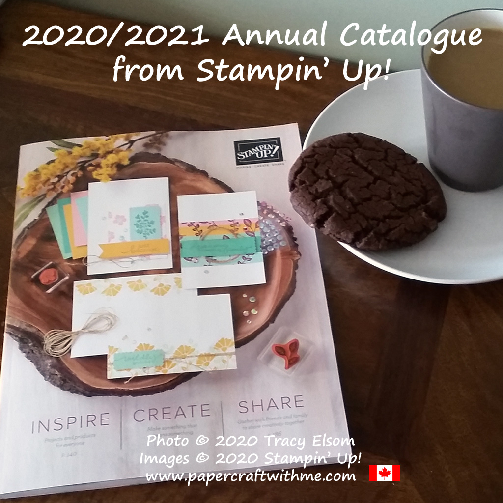 The 2020-2021 Annual Catalogue from Stampin' Up! goes live on June 3rd.