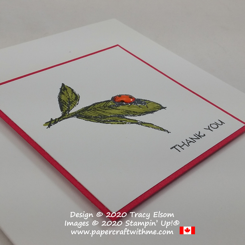 Clean and simple thank you card with a pretty ladybird created using the Field Journal Stamp Set from Stampin' Up! #papercraftwithme