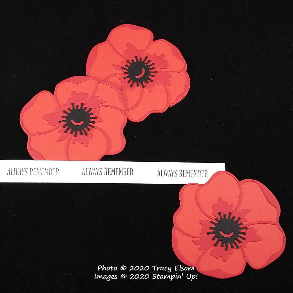 Always Remember - Red Poppies