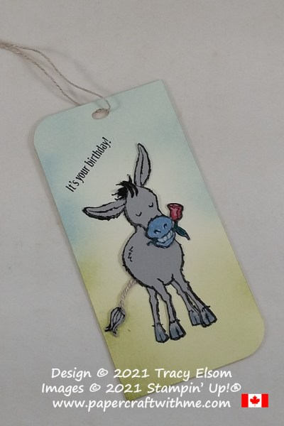 Cute birthday gift tag created using the Darling Donkeys Stamp Set from Stampin' Up! #papercraftwithme