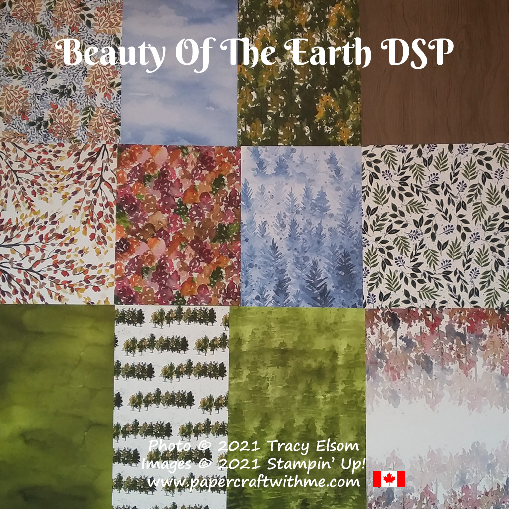 """New Beauty Of The Earth Designer Series Paper (DSP) - 12 double-sided 12"""" x 12"""" sheets, from Stampin' Up! #papercraftwithme"""