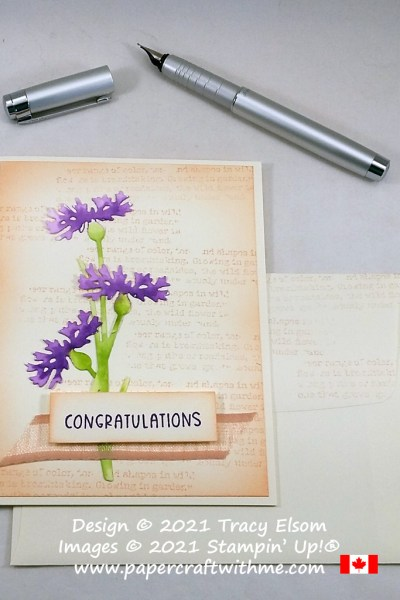 Congratulations card in Petal Pink, Gorgeous Grape and Granny Apple Green. Created using the Quiet Meadow Stamp Set and coordinating Meadow Dies from Stampin' Up! #papercraftwithme