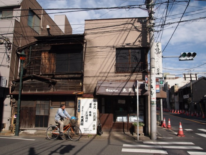 Street and Crossing, Yanaka, Tokyo