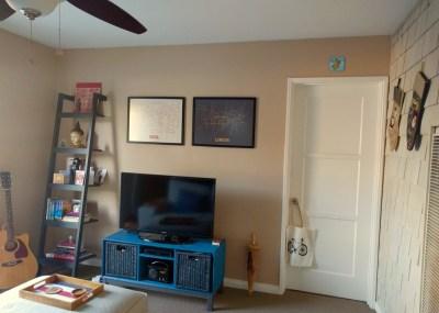 Living Room TV and bookshelf