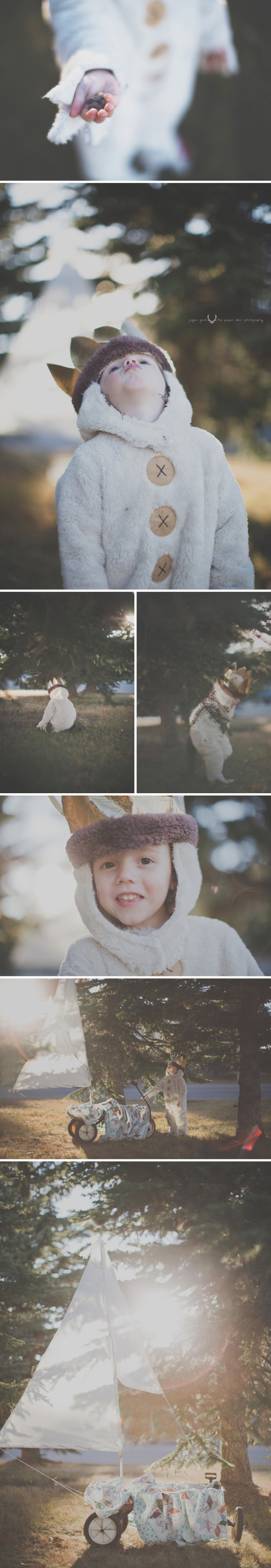 where the wild things are ➾ halloween ➾ ©The Paper Deer Photography ➾ paperdeerphoto.com/blog