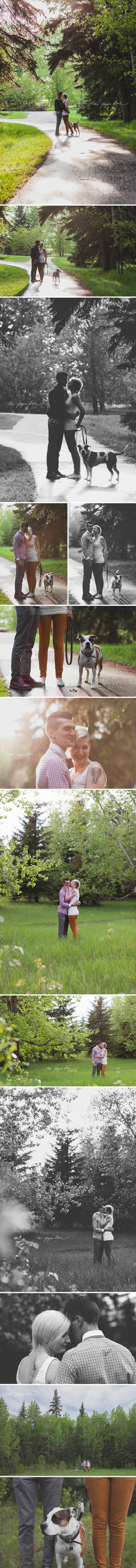 lifestyle engagements in the woods | ©The Paper Deer Photography | thepaperdeer.ca