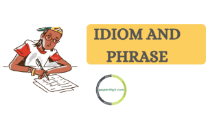 Most important idioms and Phrases