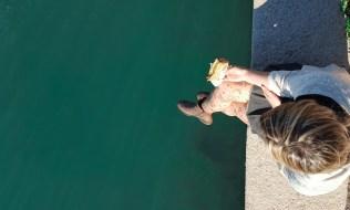 Pranzando al Porto con la Focaccia de Il Milese