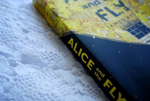 alice and the fly (1)