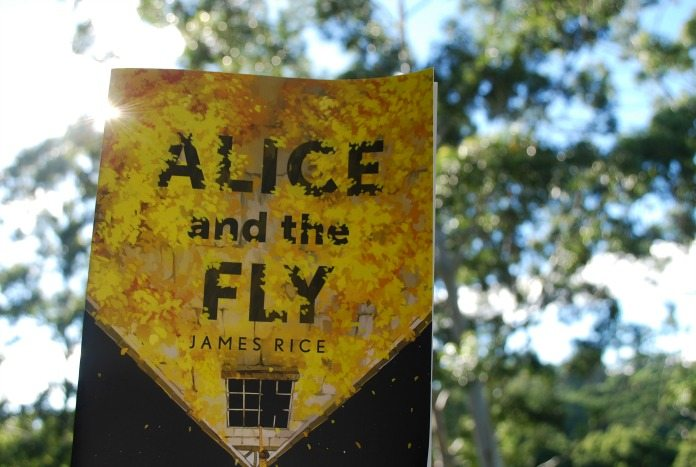 alice and the fly (6)