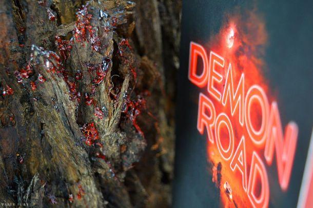 demon road (6)