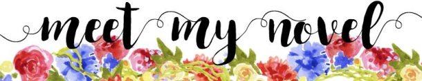 meet-my-novel
