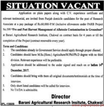 Barani Agricultural Research Institute Chakwal Jobs 2017