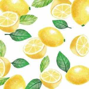 Pureborn Size 5 Pull Ups Single Pack XL 20 Pcs Lemon