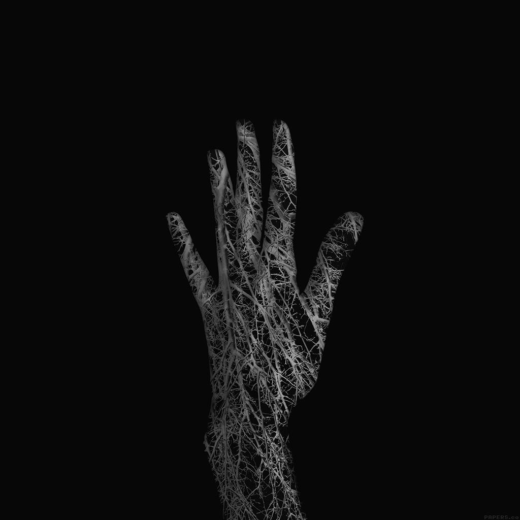 Black Car Iphone 6 Wallpaper Af99 Holleyandchris Black Branched Out Hand Nature Wallpaper