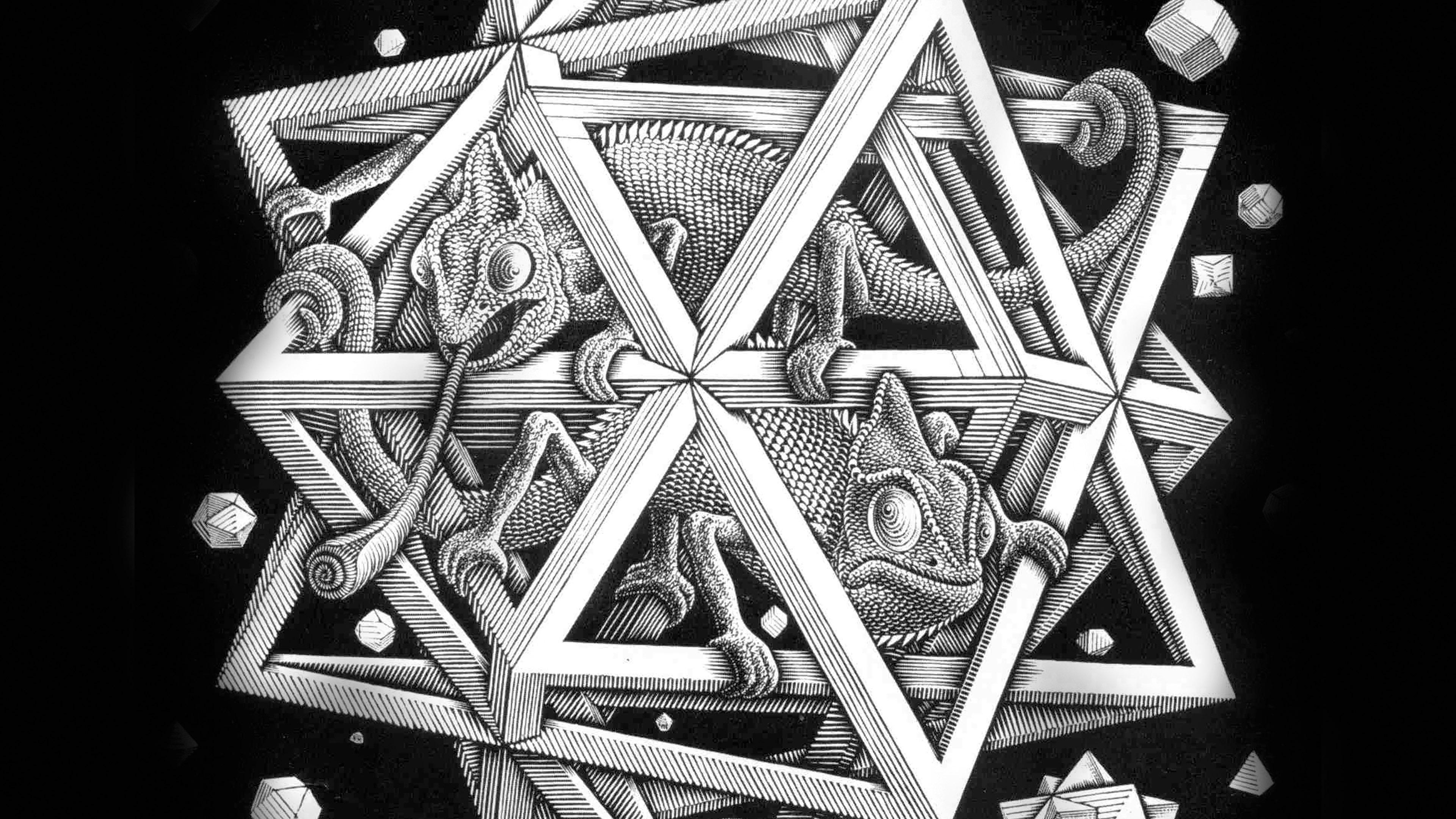 Cute Fall Background Wallpaper Ah71 Mc Escher Space Art Illust Lizard Bw Papers Co