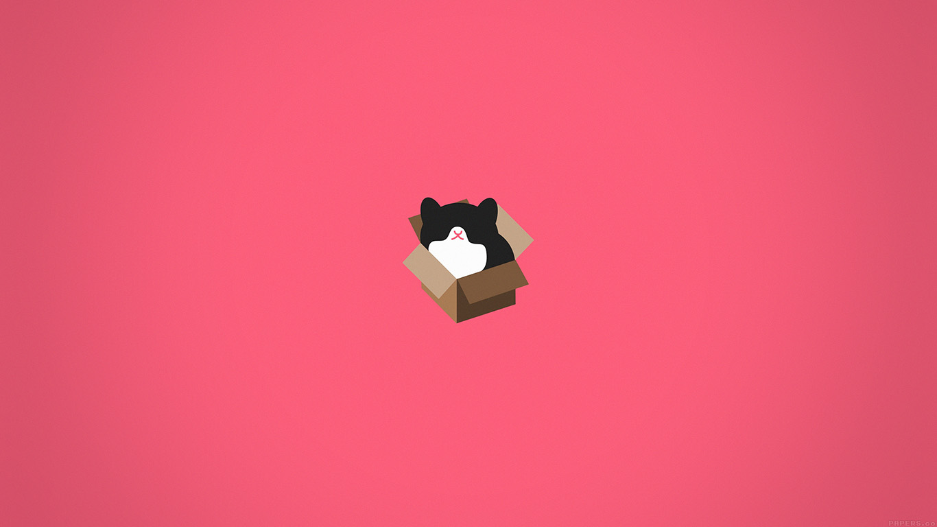 Cute Cartoon Fall Wallpaper Aj73 Cat Box Red Illust Animal Art Minimal Papers Co