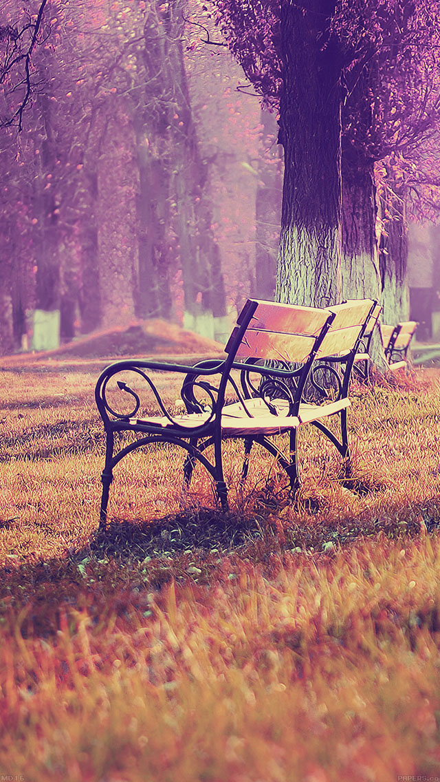 Note 8 Fall Wallpapers Md16 Wallpaper Fall Blue Park Chair Lonely Nature Papers Co