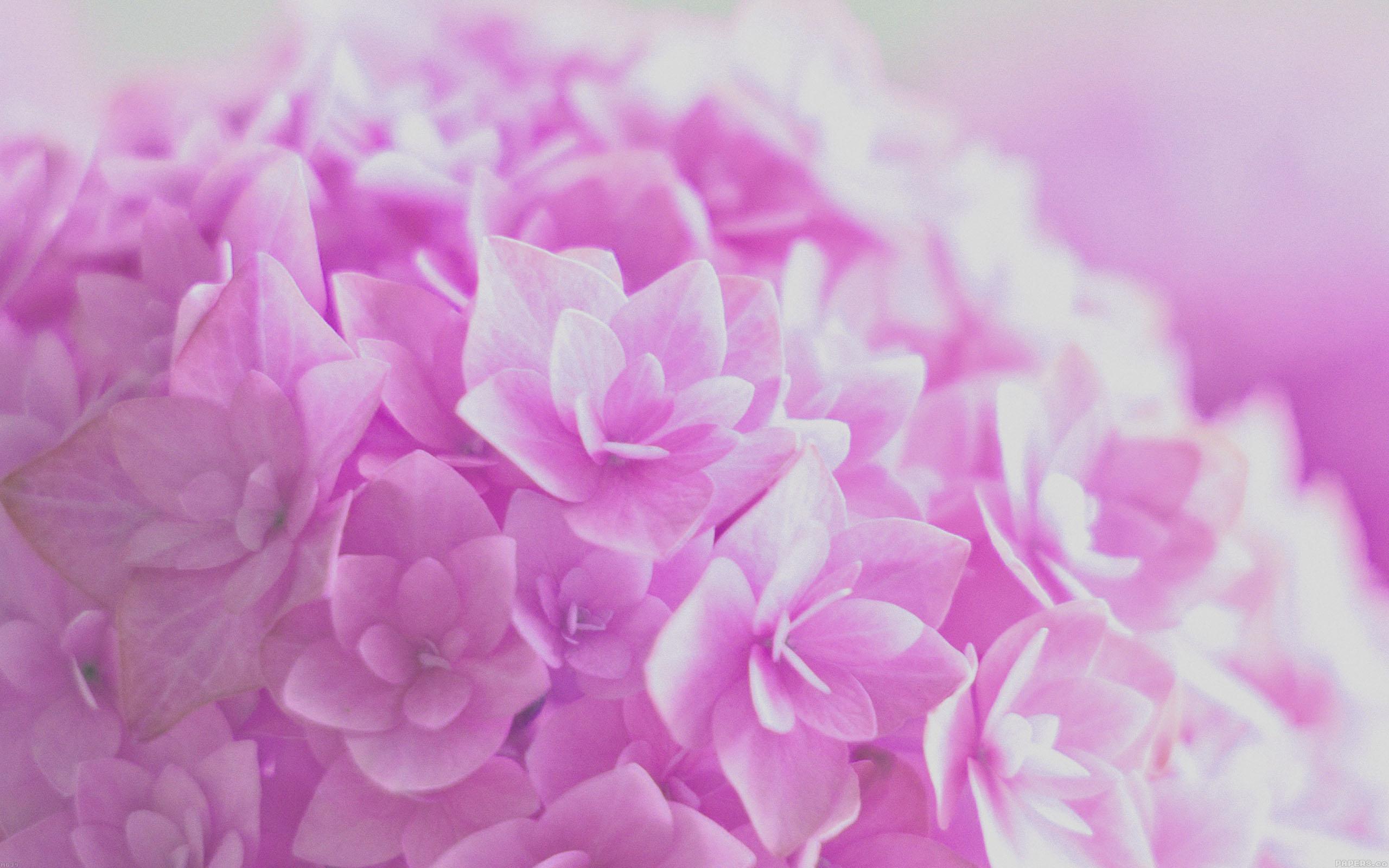 Ariana Grande Wallpaper Iphone 6 3840 X 2160